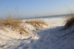 30A REO Lot 97 Morgans Trail The Preserve at Grayton Beach